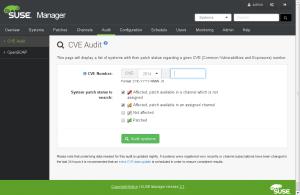 CVE Audit